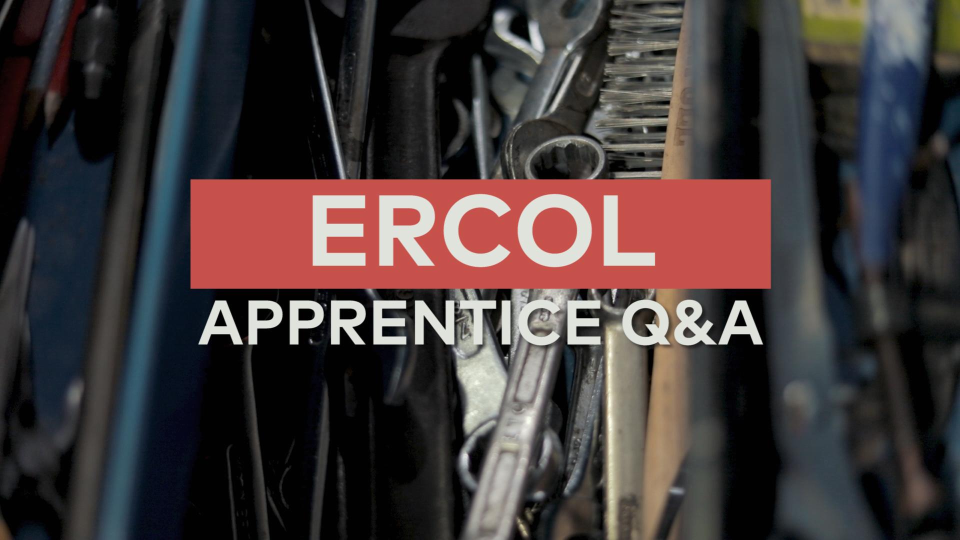 Ercol: Apprentice Q&A